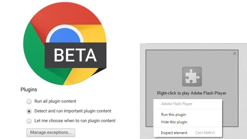 Google Chrome Beta Plugin Click to Play Flash