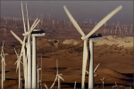 ETF industry developments echo prominence of ESG investing during 2015