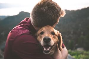 ProShares Pet Care ETF