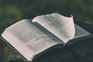 Timothy Plan Biblical Values ETFs