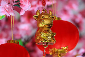 Year of the Ox promises bull market for China ETFs