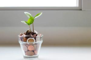 Dividend Income ESG