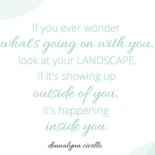 Your landscape