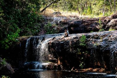 Curtain Falls - Litchfield National Park