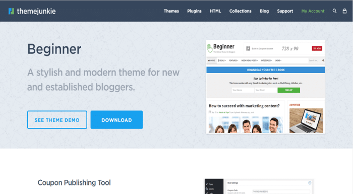 Beginner Theme Front Page