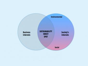 essay key to sustainability human resources by andrew savitz the sustainability sweet spot