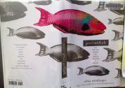 Parrotfish by Ellen Wittlinger 2007: Simon & Schuster Books for Young Readers ISBN: 9781416916222