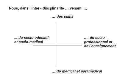 Le champ des différents corps professionnels dans l'institution socio-médicale ou socio-éducative