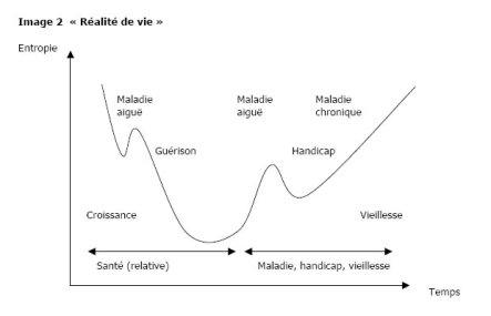 realite_vie_entropie