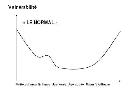 vulnerabilite_capabilite_1_vulnerabilite