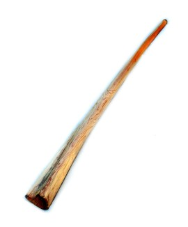 Didgeridoo from Suren wood 205 cm -C