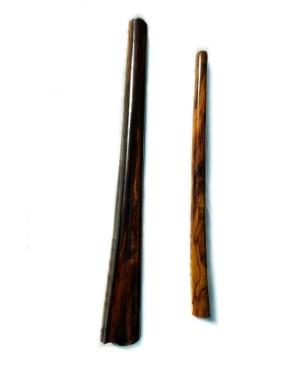 didgeridoo store