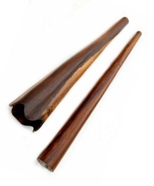 didgeridoo buy