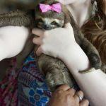 PERCHÉ È SBAGLIATO PUBBLICARE SELFIE CON ANIMALI SELVATICI?
