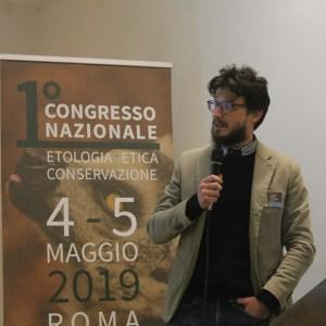 Diego De Simone, Sapienza Università di Roma