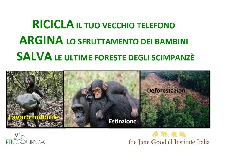 JANE GOODALL INS ITALIA - CELL 4.1_page-0001