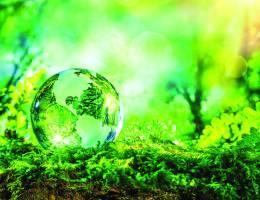 alternative sostenibili