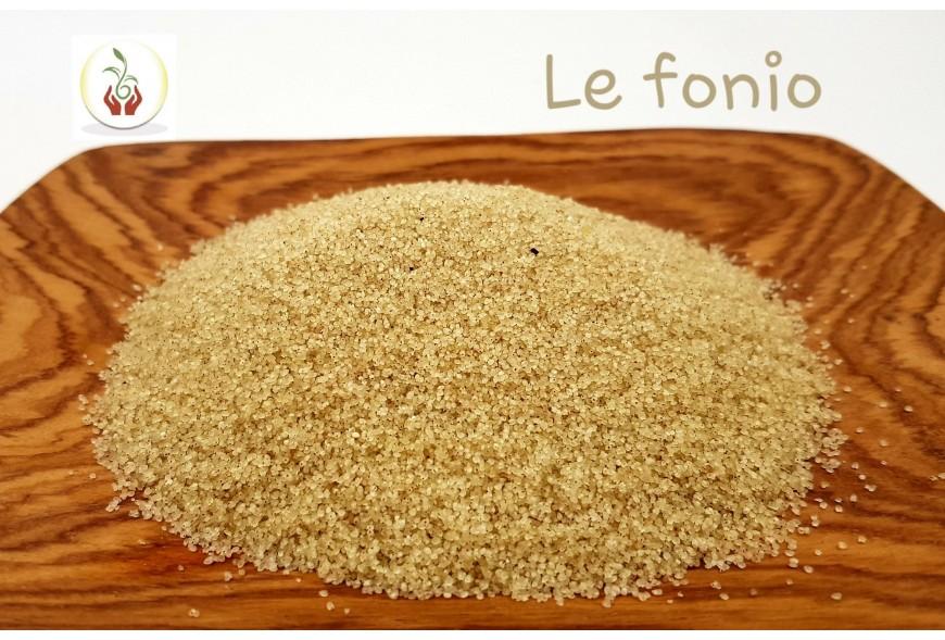 LE FONIO, Céréale sans gluten