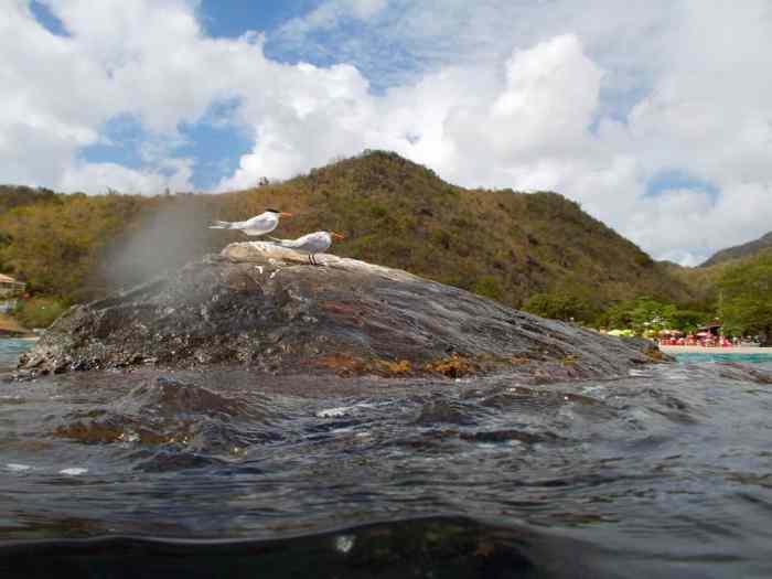 Sud Caraïbes 2014, Anses d'Arlet ©Etpourtantelletourne.fr