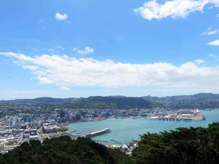 Nouvelle Zélande Wellington - Mont Victoria 2016 ©Etpourtantelletourne.fr