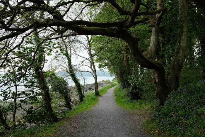 Itinéraire sur les lieux de tournage de Game of Thrones en Irlande du Nord - Audleys Castle ©Etpourtantelletourne.fr