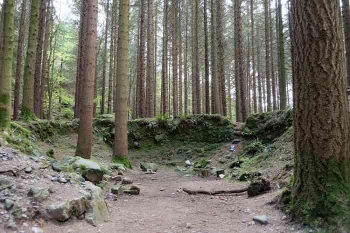 Lieux de tournage saison 8 de Game of Thrones en Irlande du Nord - Tollymore forest Park ©Etpourtantelletourne.fr