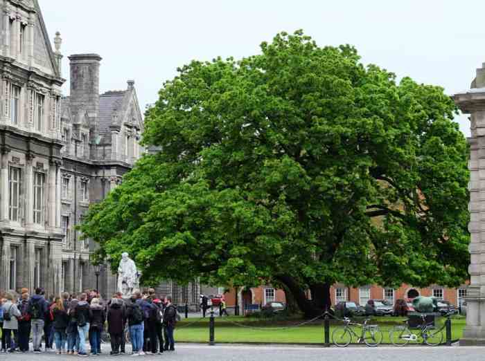 Dublin université de Trinity College ©Etpourtantelletourne.fr