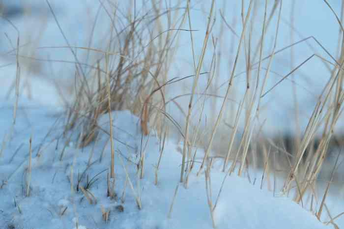Islande en hiver ©Etpourtantelletourne.fr