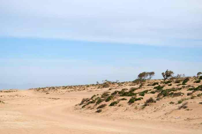 Pistes Parc National de Souss Massa Maroc ©Etpourtantelletourne.fr