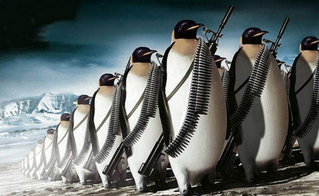 penguins marching to war