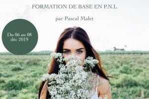 formation_base_pnl_a_la_reunion - decembre_2019 - pascal_malet - Être Soi