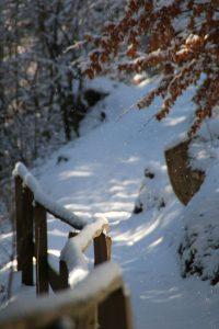 sentiero innevato con recinto a meltina