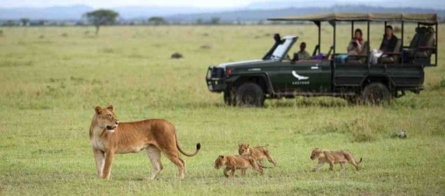 National Parks mark sixty years of conservation success in Tanzania