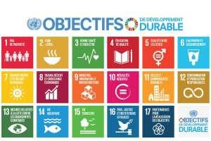Les Objectifs de développement durable : rendre le monde un tout petit peu meilleur