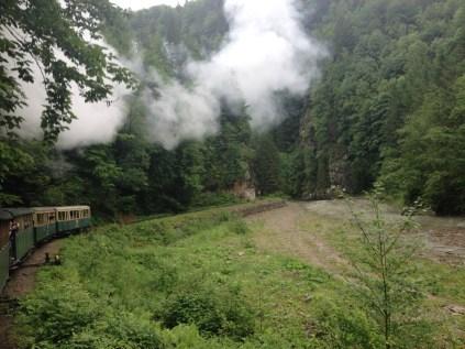 Valea_Vaserului6