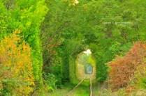 Tunelul ibirii din CS-5