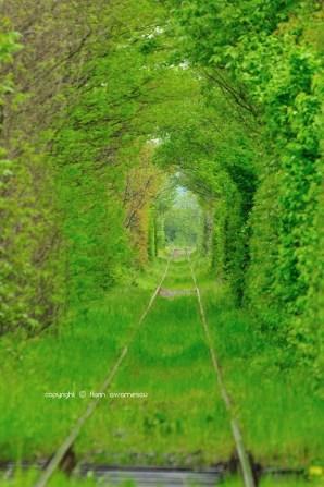 Tunelul ibirii din CS-7