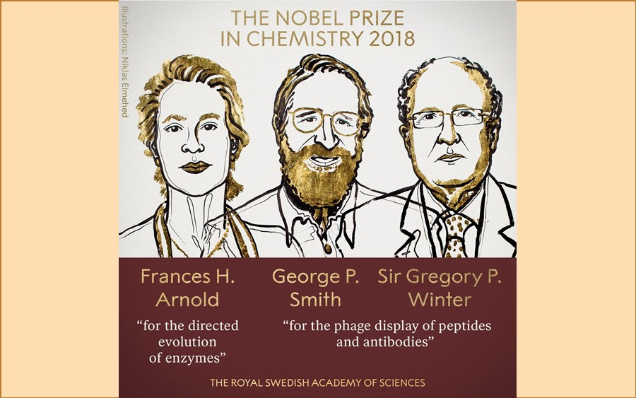 Frances Arnold, George P Smith and Gregory Winter are awarded the 2018 Nobel Prize in Chemistry