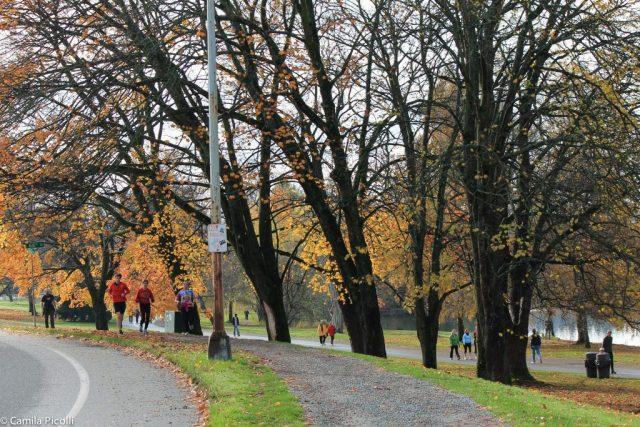 Green Lake Park - Seattle-6
