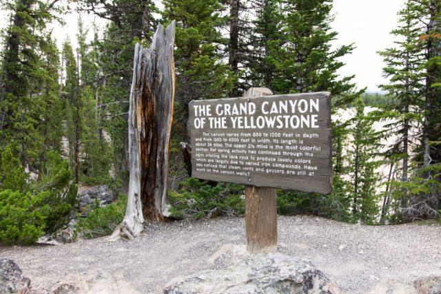 2016-06-10 Yellowstone-36