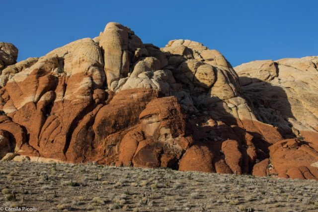 Red Rock Canyon-6