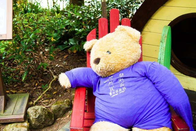 bear at lavender cottage