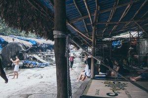 Elephant Springs Suol Voi Hue Adventure Motorbike Tour Vietnam Hoi An