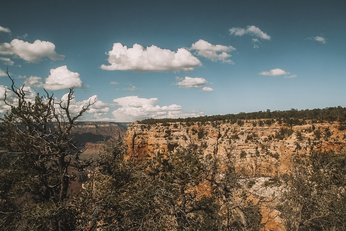 Grand Canyon South Rim Day Tour, 2-Week US Itinerary