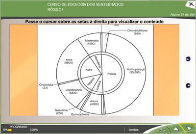 CURSO ONLINE DE ZOOLOGIA DOS VERTEBRADOS2