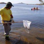 Spain, Murcia region trade blame on pile of dead fish, lagoon disaster 💥😭😭💥
