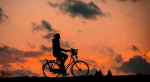bikefits