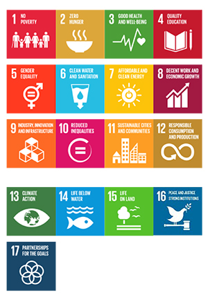 Big goals: Sustainable Development Goals adopted by UN members in September stive to address the root causes of poverty (Source: UN)