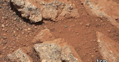 The presence of rounded pebbles on Mars was evidence of a prior history of water on the planet. In a new study, researchers have used the pebbles' shape to extrapolate how far they must have traveled down an ancient riverbed. The analysis suggests they moved approximately 30 miles, indicating that Mars once had an extensive river system. Credit NASA/JPL-Caltech/MSSS