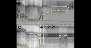 This is radar depth-sounder data from before and after the breakup of the Zachariæ Isstrøm ice shelf. The green line reveals the ice bottom, and loss of ice between 1999-2014. The white line represents hydrostatic equilibrium estimates of the ice bottom. Credit: KU News Service | University of Kansas